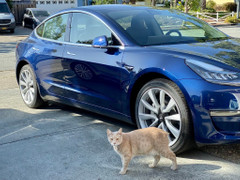 Things I wish I knew Before Buying a Tesla Model 3